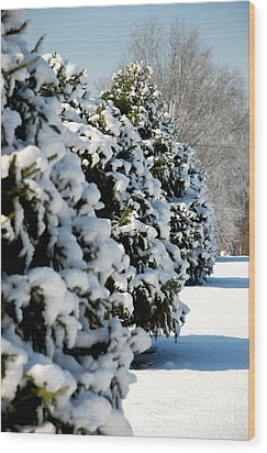 Wood Print featuring the photograph Snow In The Trees by Mark Dodd