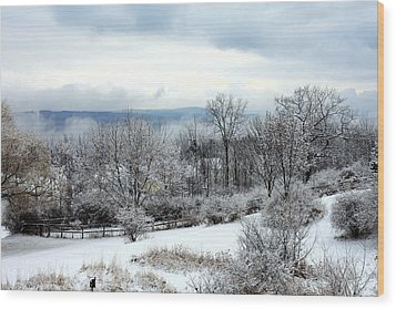 Snow In Winter Ithaca New York Wood Print by Paul Ge
