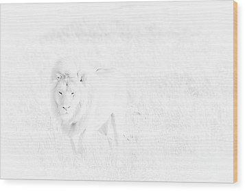Snow Lion Wood Print by Darcy Michaelchuk