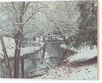 Wood Print featuring the photograph Snow On The Bayou by Louis Nugent