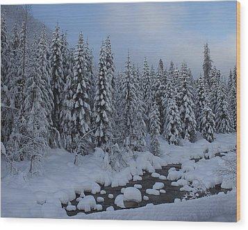 Snow Pines Wood Print by Sylvia Hart