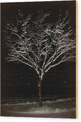 Snow Shower In The Night Wood Print