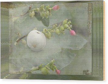 Snowberry Tales Wood Print by Steppeland -
