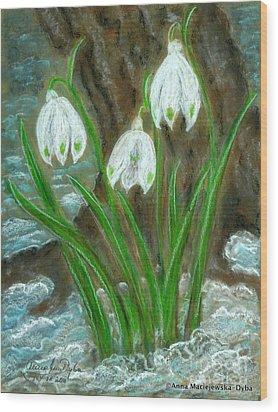 Snowdrops Wood Print by Anna Folkartanna Maciejewska-Dyba
