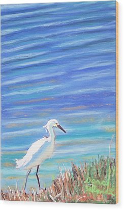 Snowy Egret At Sanibel Island Wood Print