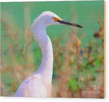 Snowy Egret . Painterly Wood Print by Wingsdomain Art and Photography