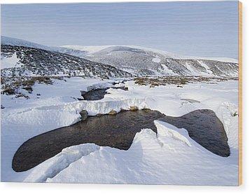 Snowy Landscape, Scotland Wood Print by Duncan Shaw