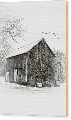 Snowy Morning Wood Print by Mary Timman
