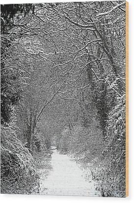 Wood Print featuring the photograph Snowy Path by Linsey Williams