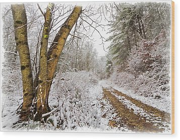 Snowy Watercolor Wood Print by Debra and Dave Vanderlaan