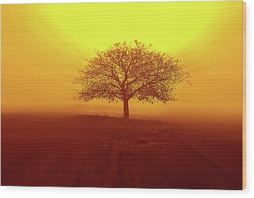 So Lonely Wood Print by Philippe Sainte-Laudy Photography