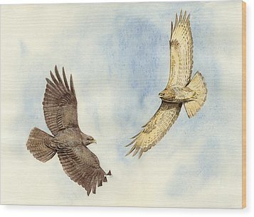 Soaring Buzzards Wood Print by Chris Pendleton