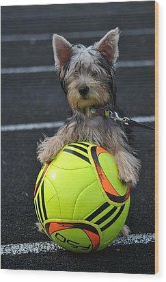 Soccer Dog Wood Print by Dawn Moreland