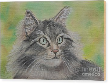 Soft Kitty Wood Print by Julie Brugh Riffey