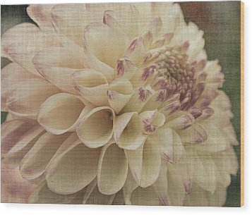 Soft Lady Wood Print by Terrie Taylor
