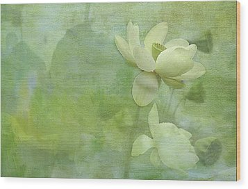 Soft Lillies Wood Print by Carolyn Dalessandro