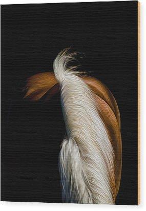 Soft N Silky Wood Print by Gary Smith