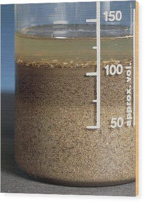 Soil Analysis Wood Print by Sheila Terry