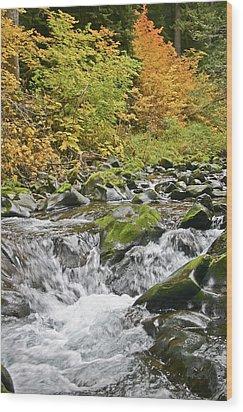 Sol Duc Fall Wood Print