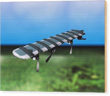 Solar Powered Aeroplane, Artwork Wood Print by Christian Darkin