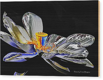 Wood Print featuring the photograph Solarized Lotus B by Travis Burgess