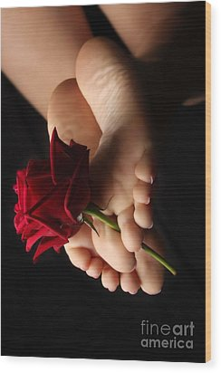 Sole Rose Wood Print by Tos Photos