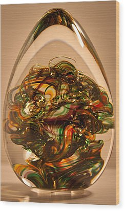 Solid Glass Sculpture E1p Wood Print by David Patterson
