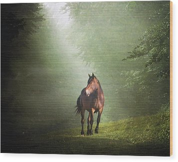 Solitary Horse Wood Print by Christiana Stawski