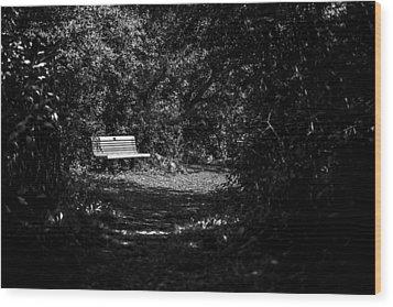 Solitude Wood Print by CJ Schmit