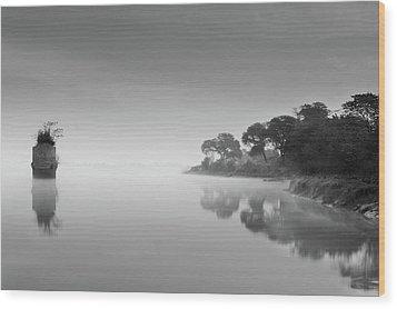Solitude-ii Wood Print by Amer S Raja - Arifsons, Jhelum.