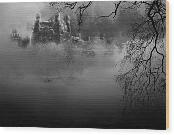 Solitude In Central Park Wood Print by Jeff Burgess