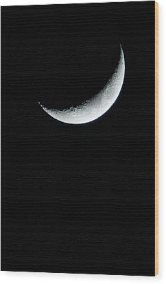 Solo Wood Print by Heide Rainey