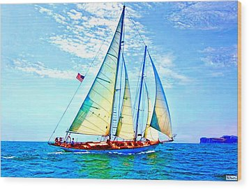 Solo Sailing Wood Print by Paula Greenlee