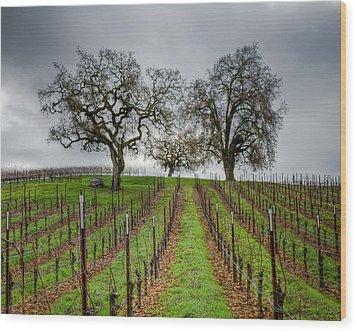 Sonoma County Vineyard Wood Print by Joan McDaniel