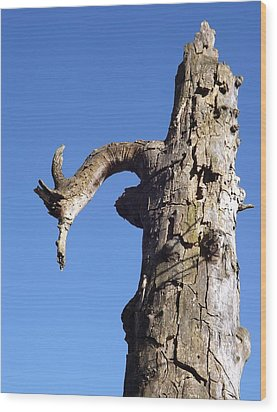 Wood Print featuring the photograph Soul Of The Wood Pecker by Gerald Strine