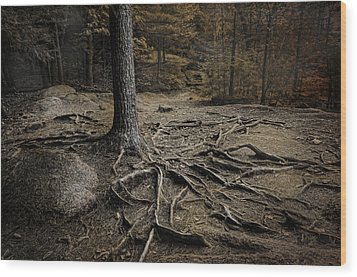 Soul Searching Wood Print by Robin-Lee Vieira