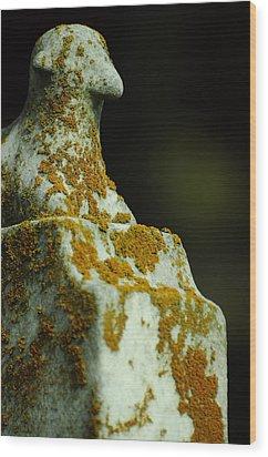 Soundless Sleep The Meek Wood Print by Rebecca Sherman