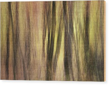 Sourwoods In Autumn Abstract Wood Print by Rob Travis