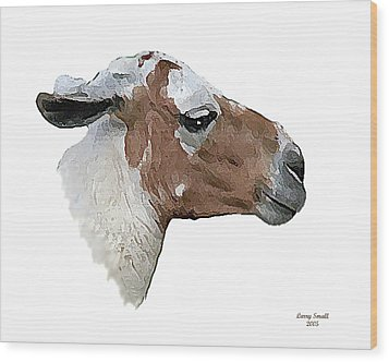 South American Goat Wood Print by Larry Small