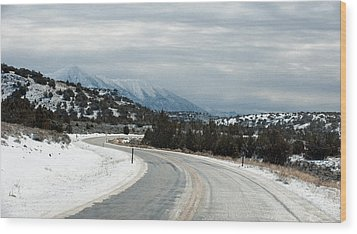 Wood Print featuring the photograph South On Highway 447 by Gary Rose