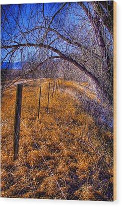 South Platte Fenceline Wood Print by David Patterson