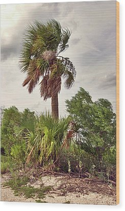 Wood Print featuring the photograph Southern Breeze by Margaret Palmer