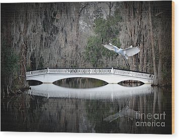 Wood Print featuring the photograph Southern Plantation Flying Egret by Dan Friend