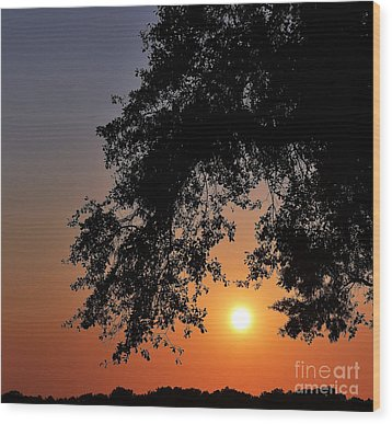 Southern Sky Wood Print