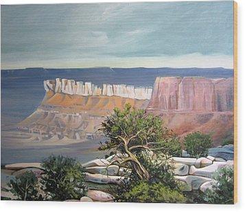 Southern Utah Butte Wood Print by Matthew Chatterley