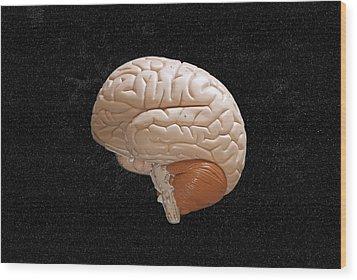 Space Brain Wood Print by Richard Newstead