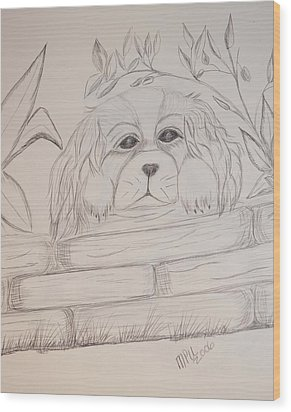 Wood Print featuring the drawing Spaniel Pup by Maria Urso