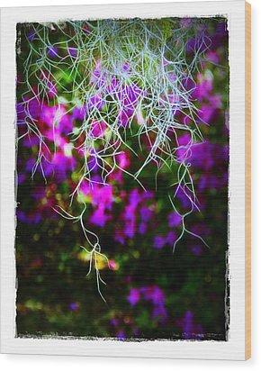Spanish Moss And Azaleas Wood Print by Judi Bagwell