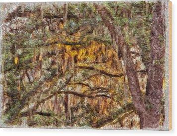 Spanish Moss And Sunset Wood Print