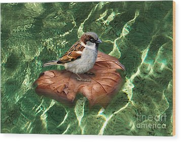 Wood Print featuring the digital art Sparrow On A Quest by Rosa Cobos